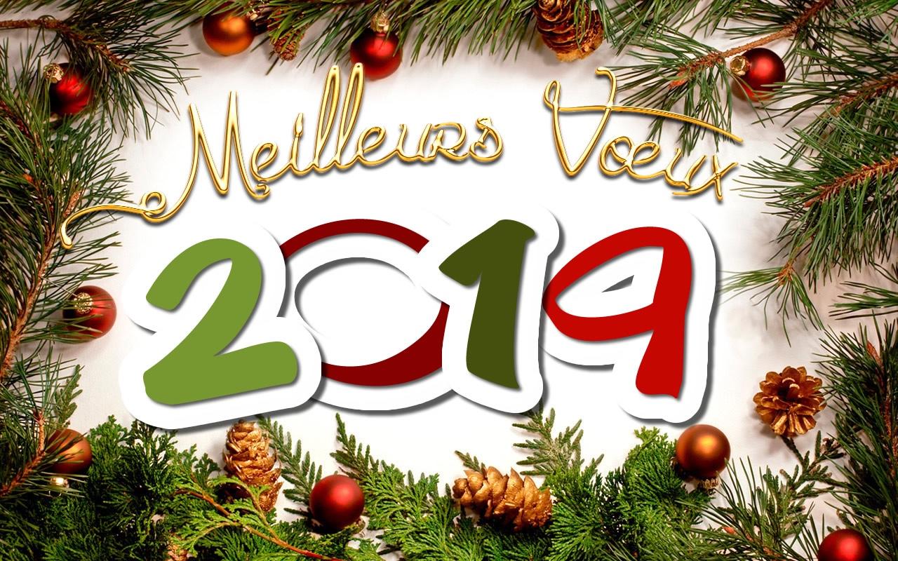 meilleurs-voeux-2019